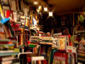 jacquesnoel 400 LE REGARD MODERNE ::: Une librairie sans fard
