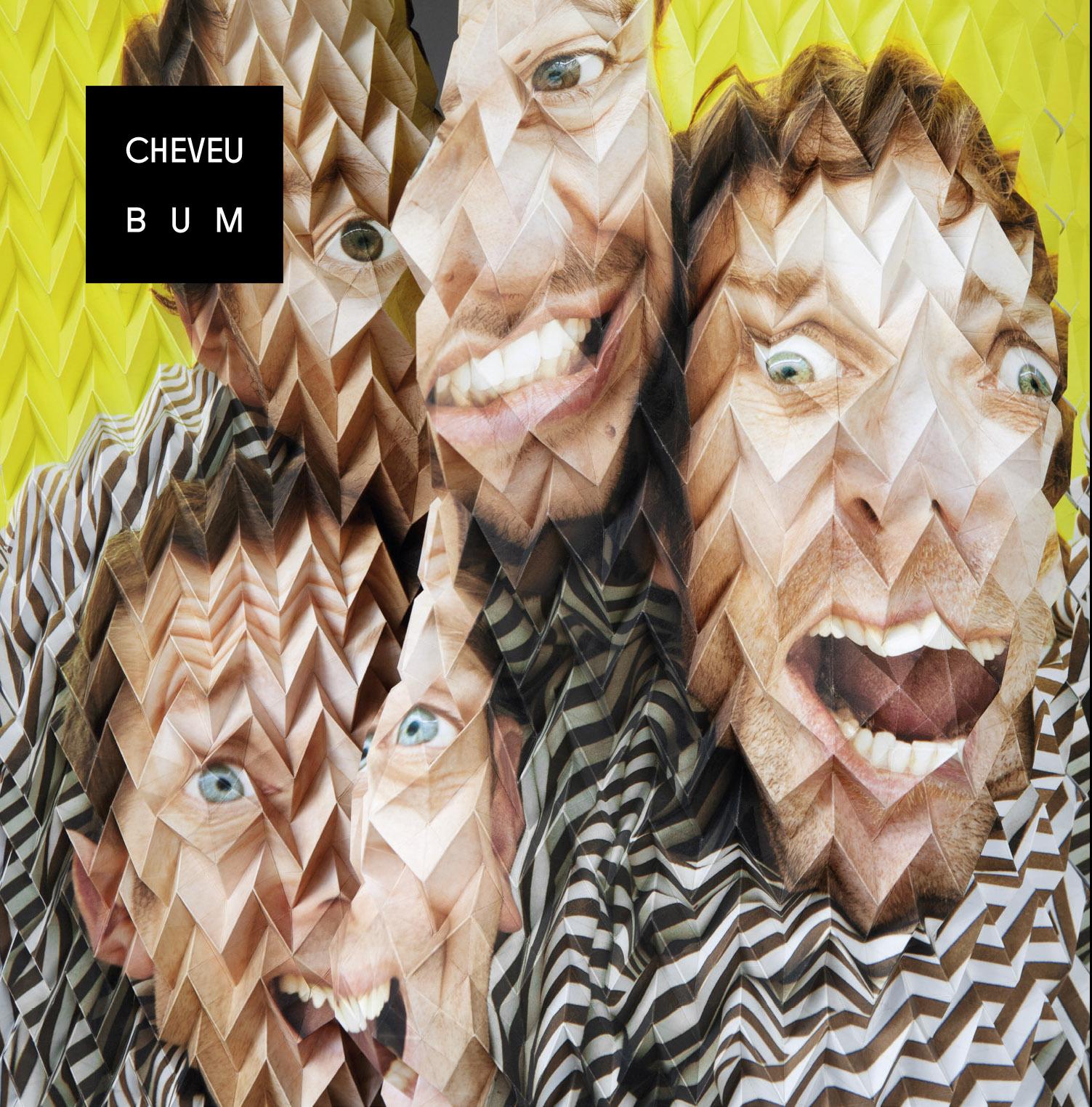 http://gonzai.com/wp-content/uploads/2014/01/CHEVEU-BUM-COVER-BASSE-DEF.jpg