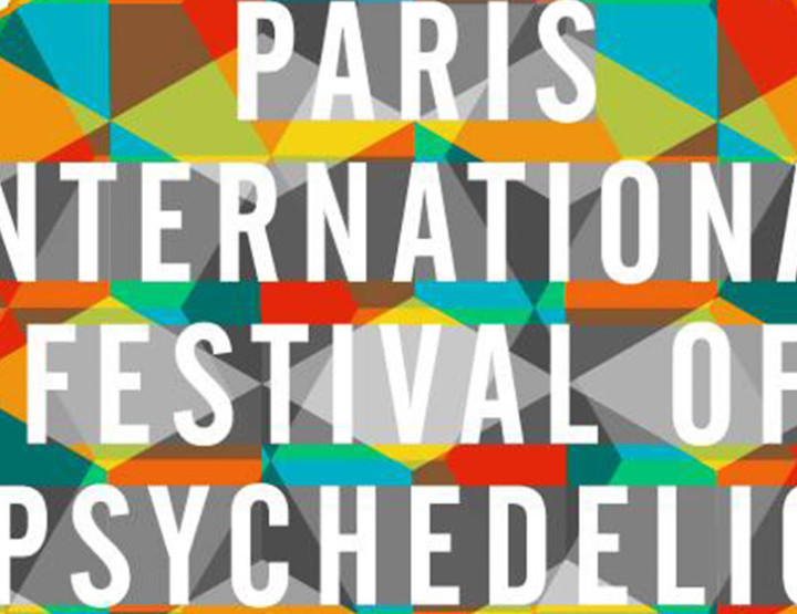 PARIS INTERNATIONAL FESTIVAL OF PSYCHEDELIC MUSIC <br> Interview