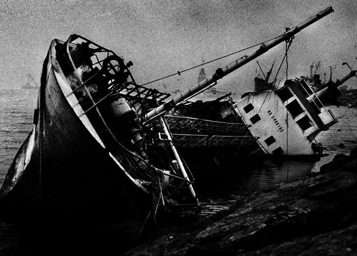 OISEAUX-TEMPETE  Voyage en Ütopiya