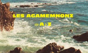 LES AGAMEMNONZ FONT DU SURF À HAUTE VITESSE