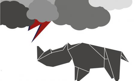 rhinoband