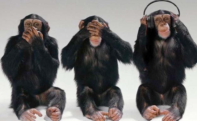 monkeyband