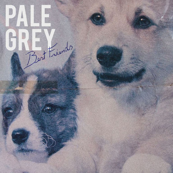 pale-grey-best-friends